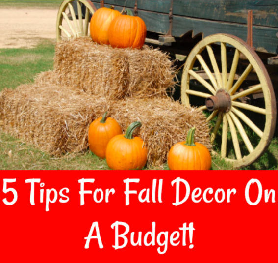 5 tips for fall decor on a budget cara harvey - Fall decor trends five tips to spruce up your homes ...